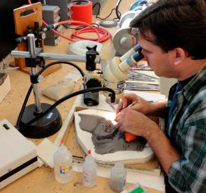 préparateur de fossiles