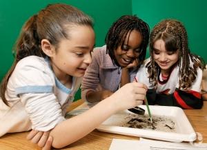 Des jeunes observant des organismes aquatiques.