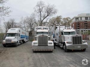 Trois camions remorques dans la cour du Musée canadien de la nature.