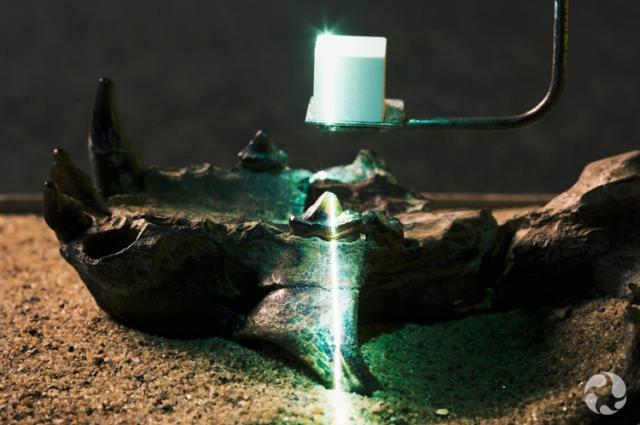 Le laser de la caméra 3D balaie le crâne fossilisé de Puijila darwini (NUFV 405).