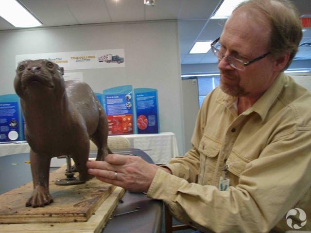 Kevin Hockley met la dernière main à une sculpture de Puijila darwini en argile.