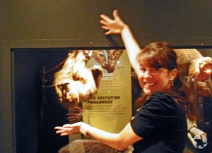 Jennifer-Lee Mason devant la vitrine du paresseux, dans l'exposition Mammifères extrêmes.