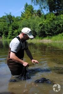 Debout dans l'eau jusqu'à mi-cuisse, Marc Beck se prépare à passer une des cordes du filet de pêche autour de sa cheville.