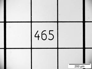 Lamelle de verre quadrillée portant le numéro 465 au centre et l'échelle de 200 µm.