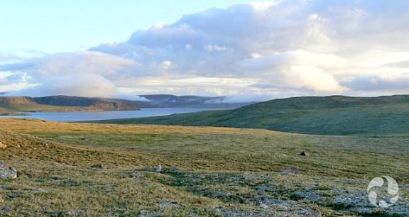 Le paysage doucement vallonné et sans arbre de la toundra à l'île Victoria, dans les Territoires du Nord-Ouest.