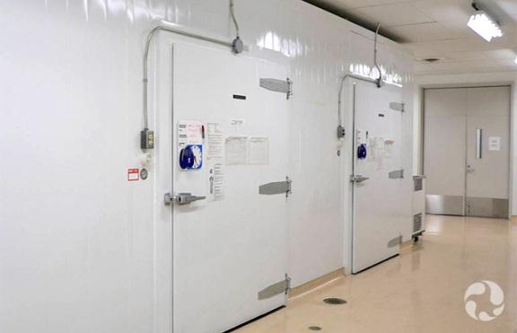Les portes d'énormes congélateurs dans un corridor du Musée.