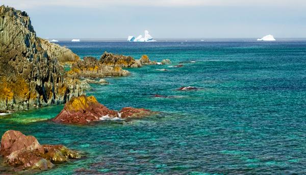 L'océan Atlantique parsemé d'icebergs, près de la péninsule Bonavista, à Terre-Neuve-et-Labrador.