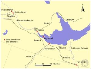 Carte schématique et partielle des Territoires du Nord-Ouest montrant les environs du Grand Lac des esclaves. Cinq points rouges indiquent les endroits où les chercheurs collecteront des lamproies.