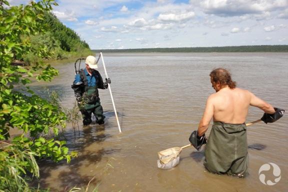 Deux hommes tenant des épuisettes qui pêchent debout dans une rivière.