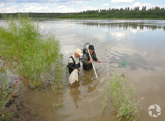 Deux hommes tenant une épuisette debout dans une rivière.
