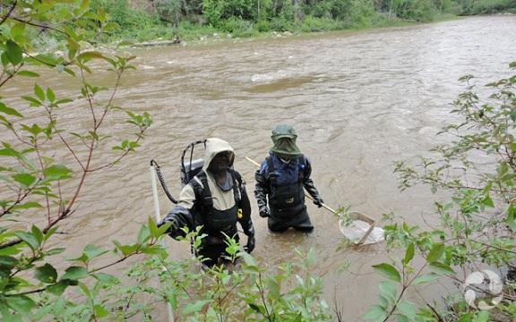 Deux personnes portant bottes-pantalon à la poitrine et masques anti-insectes debout dans une rivière.