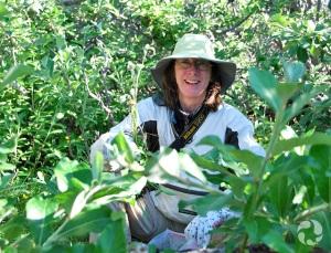 Une femme debout dans un bosquet de saules.