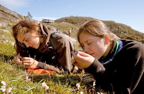 Deux filles examinent des plantes au sol.