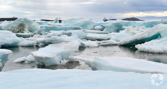 Gros morceaux de glace dans un port.