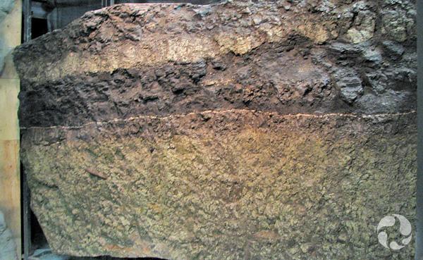 La paroi de roche sédimentaire de la Galerie.