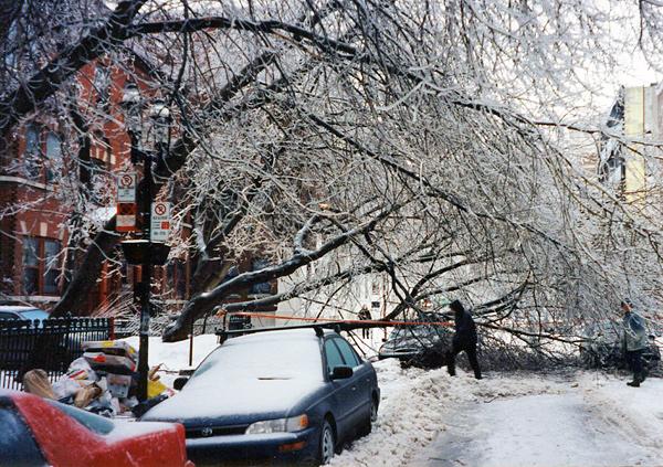Un arbre cassé sous le poids du verglas bloque une rue.