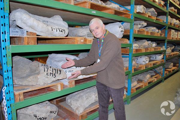 Un homme montrant des étagères où se trouvent des coques de plâtre.