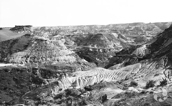 Photo noir et blanc d'un paysage des badlands de l'Alberta.