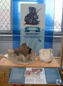 La coque en plâtre de Cornu exposée au Musée.