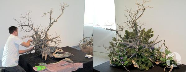 Collage de deux photos : à gauche, un homme ajoute des branches d'arbre à une souche en bois placée sur une table basse. À droite, l'arrangement Ikebana terminé, incorporant aussi des fleurs et des fourgères.