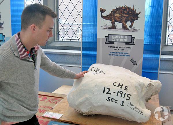 Jordan Mallon regarde la coque en plâtre contenant le fossile Coup de massue, dans l'exposition Dino Académie au Musée.