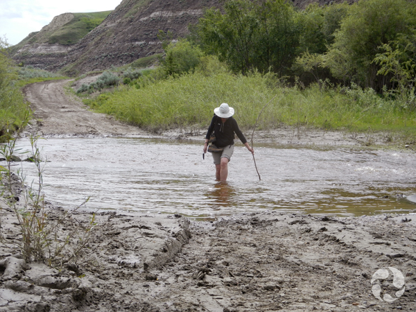 Une femme avec les pantalons retroussés traverse un ruisseau.