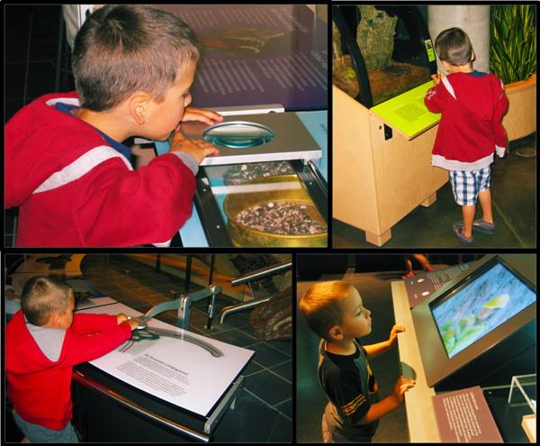 Collage de photos montrant deux garçons participant aux activités interactives de diverses galeries du Musée.