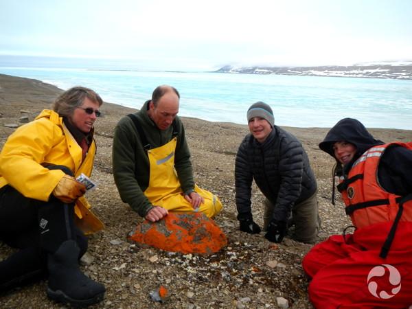 Quatre personnes sur une plage rocheuse examinant une grosse pierre couverte de lichen.