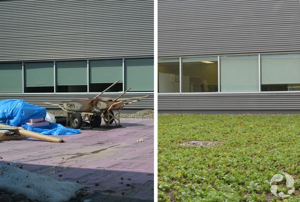 Une photo montrant une partie du toit recouvert de gravier et autres matériaux utilisés pour préparer le jardin; une autre photo montrant les plants et le sol du jardin sur le toit, bordé de pierres.