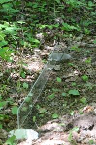 Deux morceaux de plexi-verre en position debout près d'un piège, sur le sol forestier.