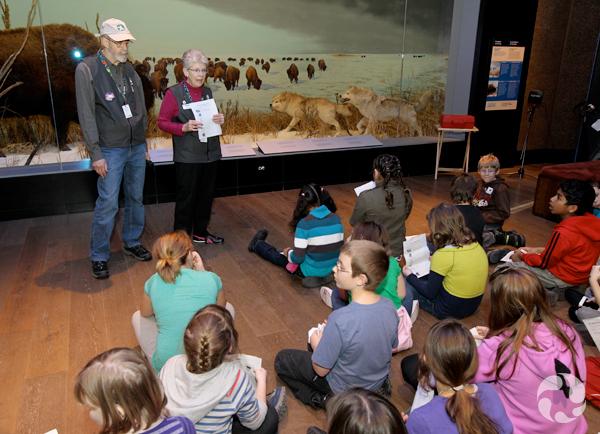 Un groupe d'élèves assis par terre dans une galerie écoute deux bénévoles qui donnent des explications, debout devant un diorama.