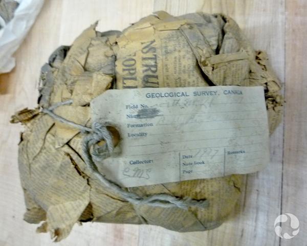 Un paquet emballé de papier journal et portant une étiquette où est inscrite l'année 1917.