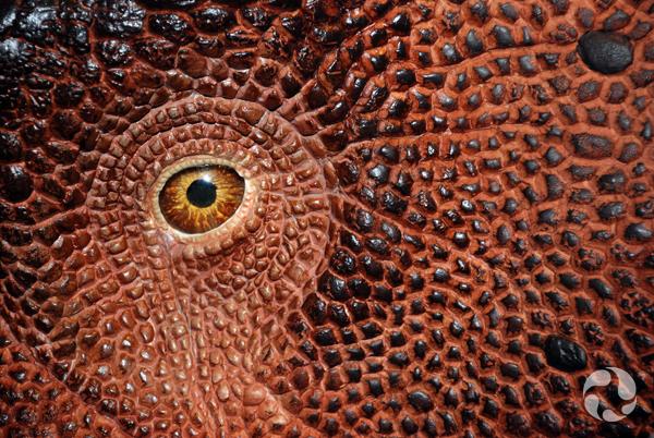 Plan détaillé de l'oeil et de la peau d'un modèle grandeur nature de dinosaure à cornes.