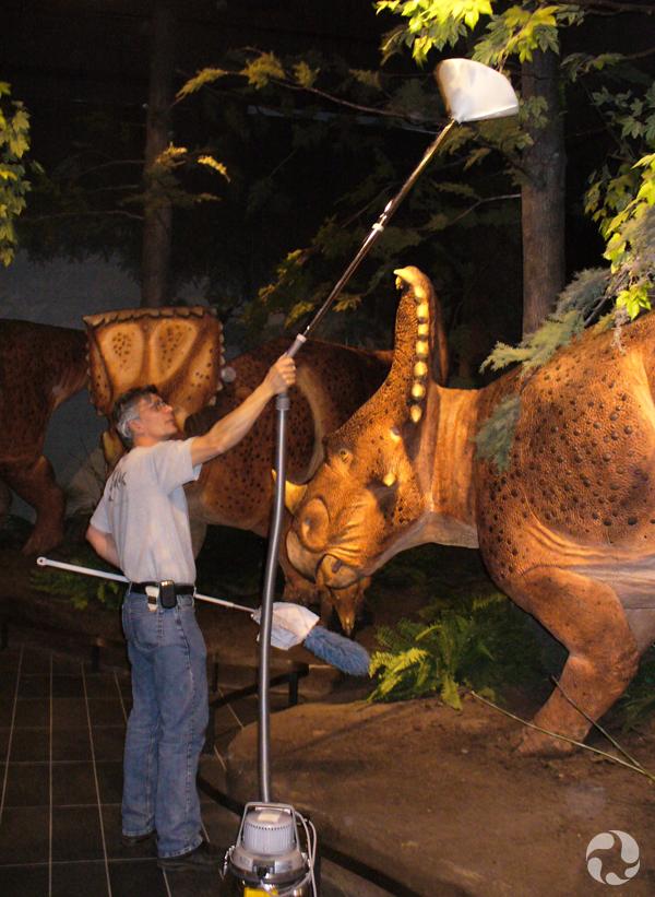 Près des modèles de Vagaceratops irvinensis, qui sont presque de grandeur nature, un homme tient au-dessus de lui un aspirateur dont le bec en forme de cône sert à aspirer les feuilles artificielles.