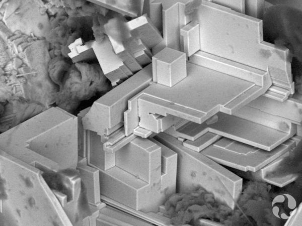 Image d'un microscope à balayage électronique montrant des cristaux en feuillets de nisnite.