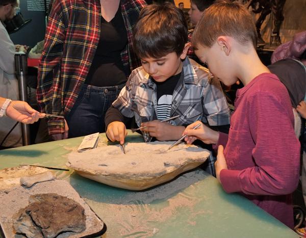 À l'aide d'outils spécialisés et de pinceaux, deux garçons dégagent un fossile de la pierre où il est incrusté.