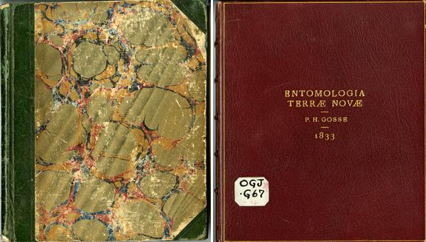 Collage : le couvercle d'une boîte reliée en cuir (à gauche) et la couverture en couleurs, à l'aspect marbré, d'un manuscrit ancien.