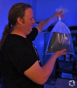 Un homme tient un sac de plastique rempli d'eau et contenant un poisson, sous un éclairage ultraviolet.