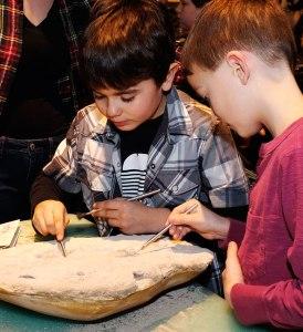 Deux garçons dépoussièrent délicatement un fossile à l'aide de pinceaux.