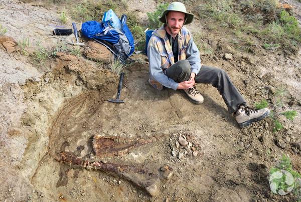 Scott Rufolo assis près d'une patte partiellement mise au jour d'un dinosaure à cornes.