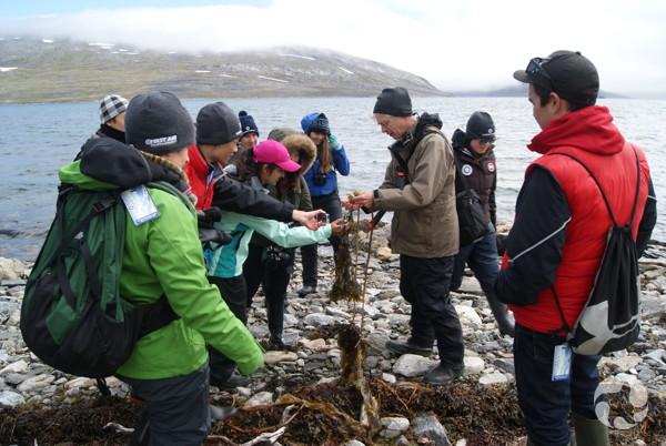 Un scientifique sur l'expédition identifie des algues marines pour des participants au parc national des Monts-Torngat.