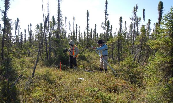 Deux scientifiques plantent des piquets de métal dans un site d'échantillonnage.