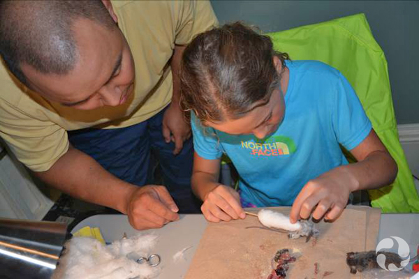 Une jeune fille assise prépare un spécimen de souris tandis qu'un homme debout la conseille.