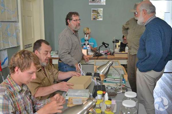 Des personnes assises à des tables examinent des spécimens pendant que d'autres discutent, debout.
