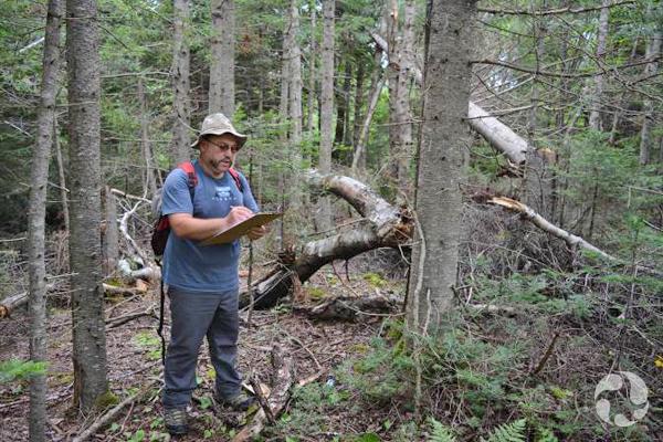 Kamal Khidas prend des notes, debout dans une forêt.