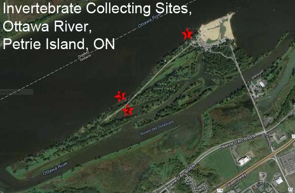 Carte aérienne des sites de collecte à l'île Petrie identifiant 3 endroits.
