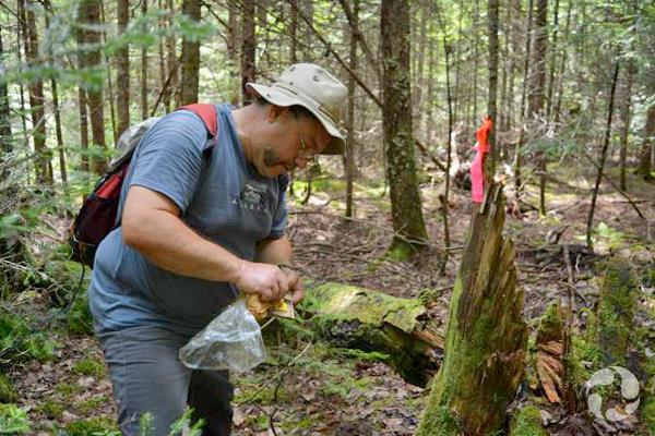 Kamal Khidas debout dans une forêt examine le piège qu'il tient dans ses mains.