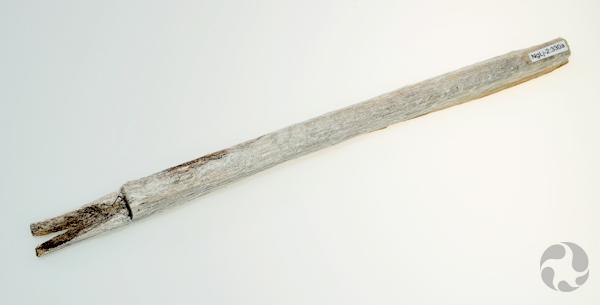 Un morceau de bois cylindrique avec un bout fendu.