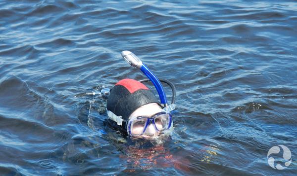 La tête d'un plongeur qui nage dans l'eau.