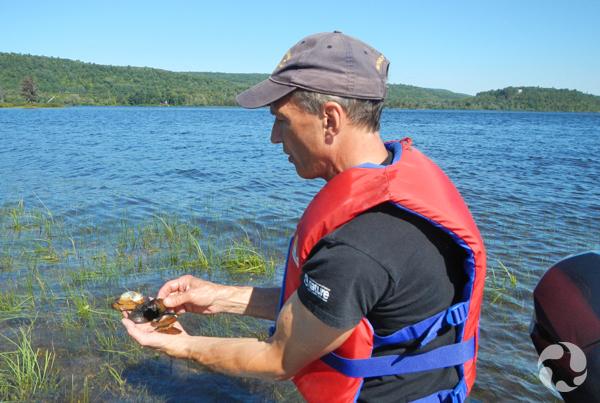 Un homme assis dans un bateau examine les moules qu'il tient dans ses mains.